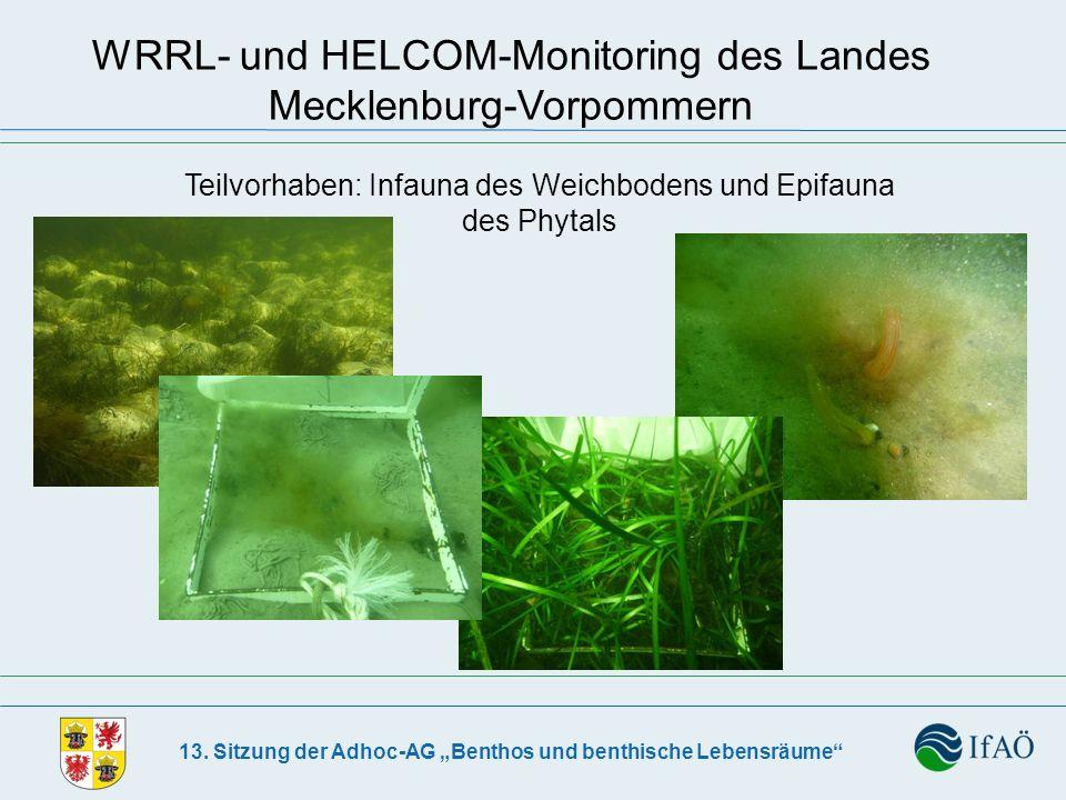 13. Sitzung der Adhoc-AG Benthos und benthische Lebensräume WRRL- und HELCOM-Monitoring des Landes Mecklenburg-Vorpommern Teilvorhaben: Infauna des We