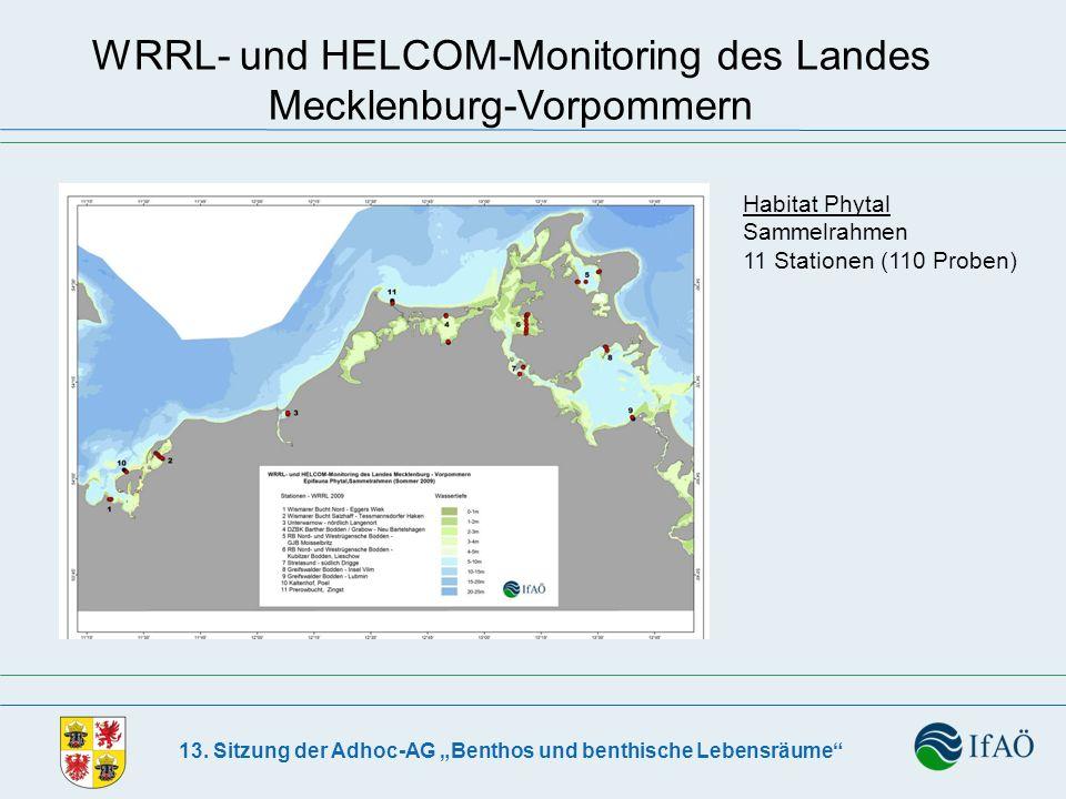 13. Sitzung der Adhoc-AG Benthos und benthische Lebensräume WRRL- und HELCOM-Monitoring des Landes Mecklenburg-Vorpommern Habitat Phytal Sammelrahmen