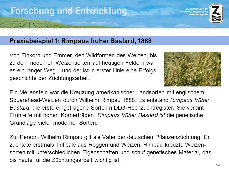 5/42 Praxisbeispiel 1: Rimpaus früher Bastard, 1888 Von Einkorn und Emmer, den Wildformen des Weizen, bis zu den modernen Weizensorten auf heutigen Fe