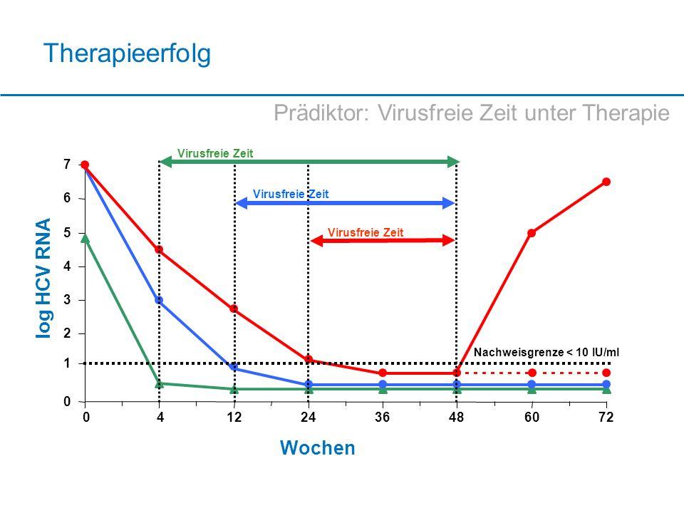 Therapieerfolg 0 1 2 3 4 5 6 7 04122436486072 Wochen log HCV RNA Nachweisgrenze < 10 IU/ml Virusfreie Zeit Prädiktor: Virusfreie Zeit unter Therapie