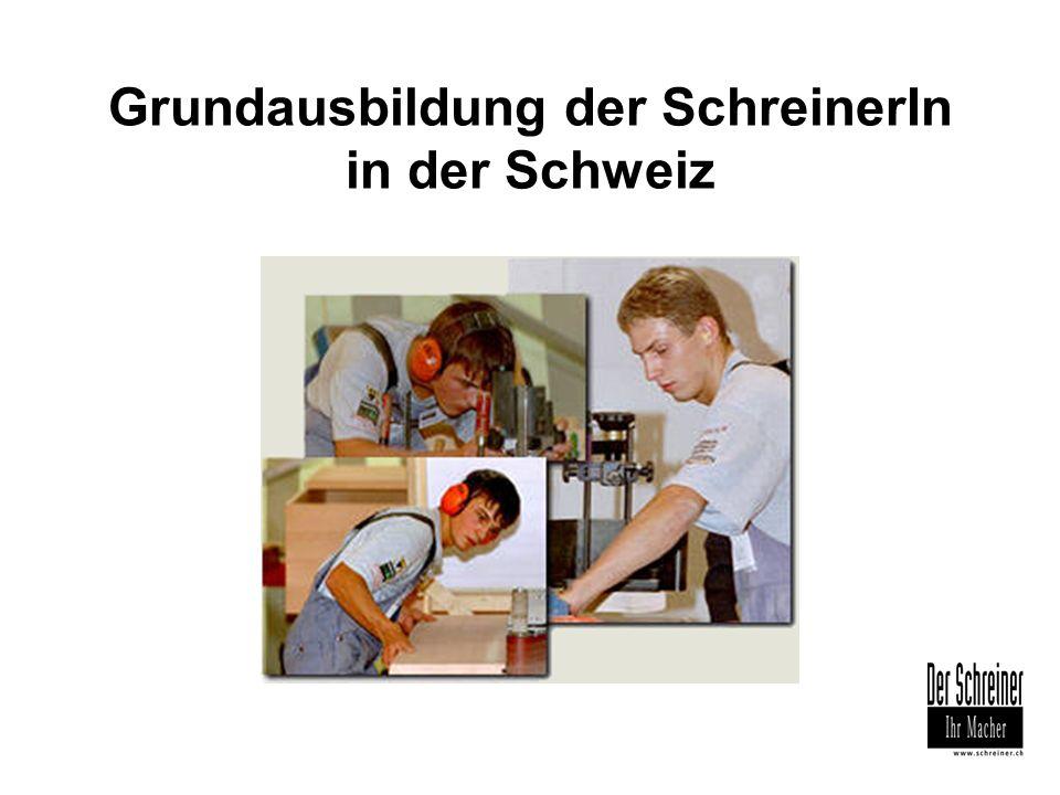 Lehrlingsausbildung Triale Ausbildung während 4 Jahren Lehrbetrieb 4 Tage / Woche ÜK (überbetriebliche Kurse) 40 – 48 Tage / 4 Jahre Berufsfachschule 1 Tag / Woche
