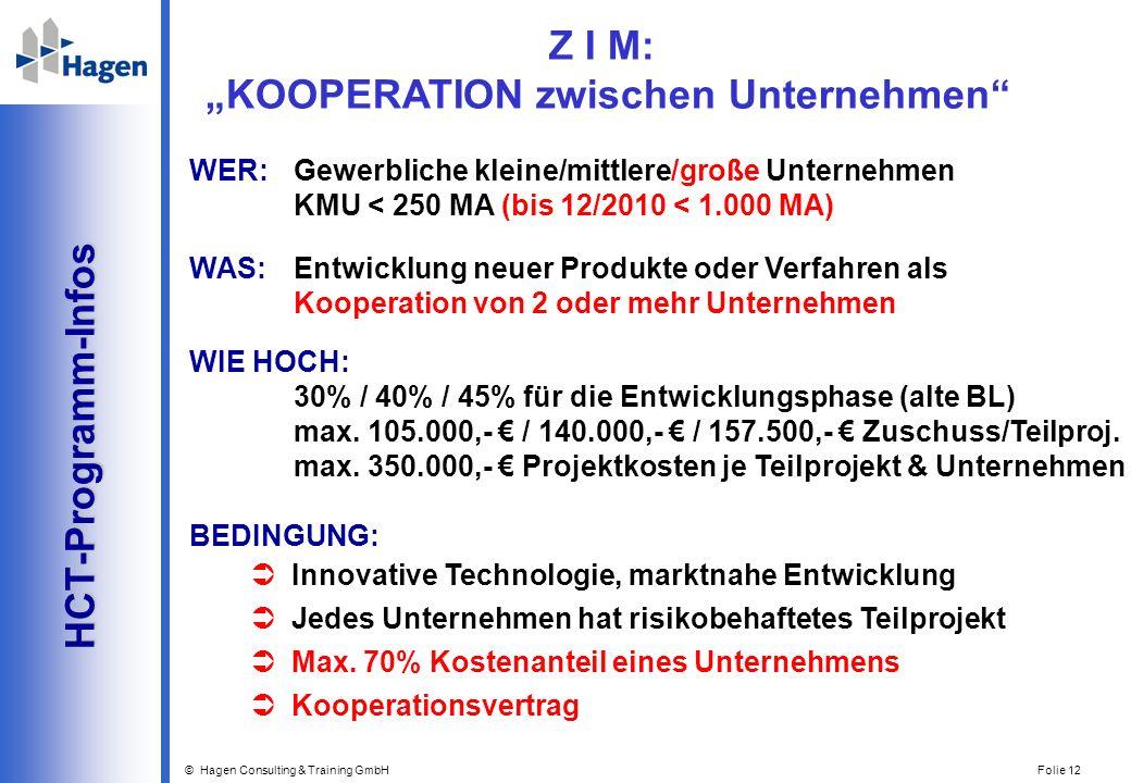 © Hagen Consulting & Training GmbH Folie 12 HCT-Programm-Infos HCT-Programm-Infos WER: Gewerbliche kleine/mittlere/große Unternehmen KMU < 250 MA (bis
