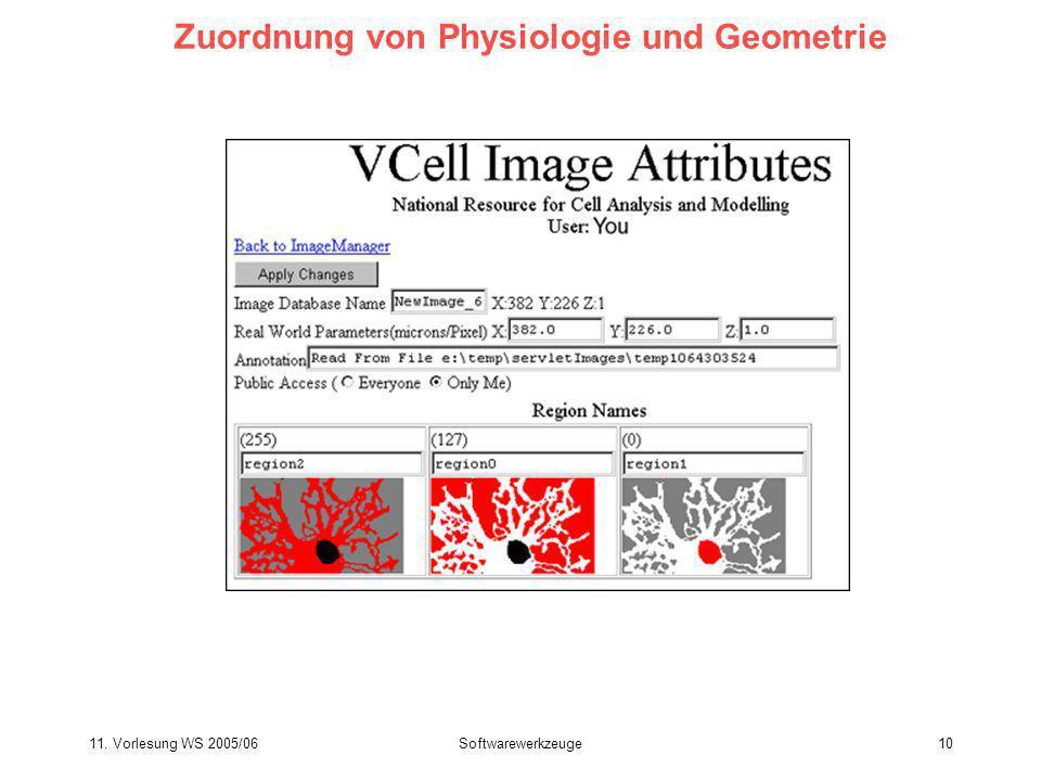 11. Vorlesung WS 2005/06Softwarewerkzeuge10 Zuordnung von Physiologie und Geometrie