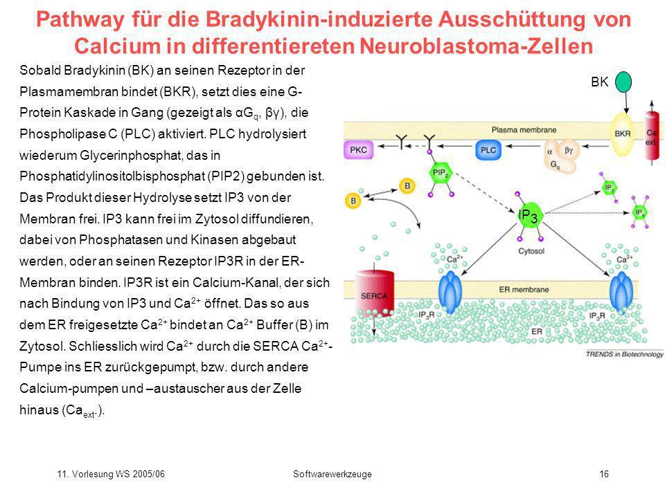 11. Vorlesung WS 2005/06Softwarewerkzeuge16 Pathway für die Bradykinin-induzierte Ausschüttung von Calcium in differentiereten Neuroblastoma-Zellen So