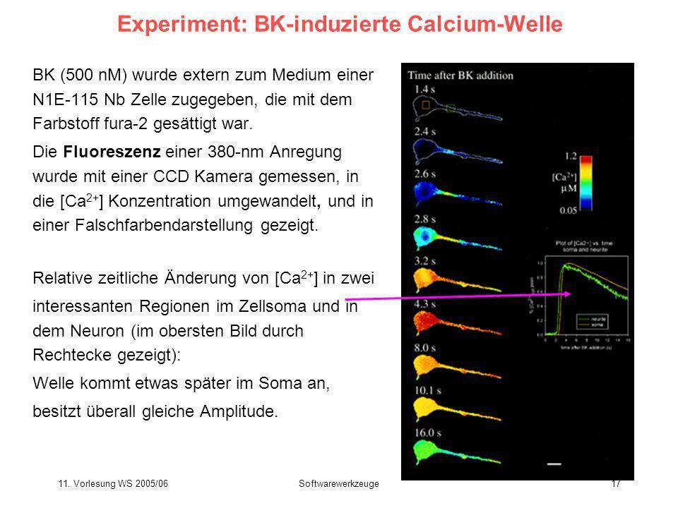 11. Vorlesung WS 2005/06Softwarewerkzeuge17 Experiment: BK-induzierte Calcium-Welle BK (500 nM) wurde extern zum Medium einer N1E-115 Nb Zelle zugegeb