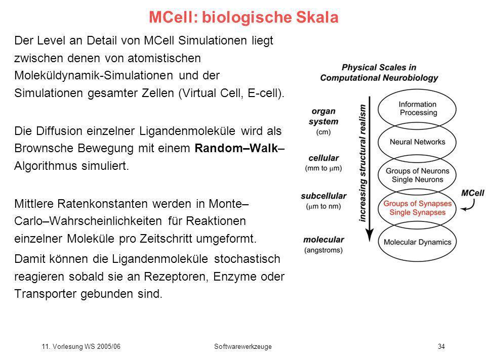 11. Vorlesung WS 2005/06Softwarewerkzeuge34 MCell: biologische Skala Der Level an Detail von MCell Simulationen liegt zwischen denen von atomistischen