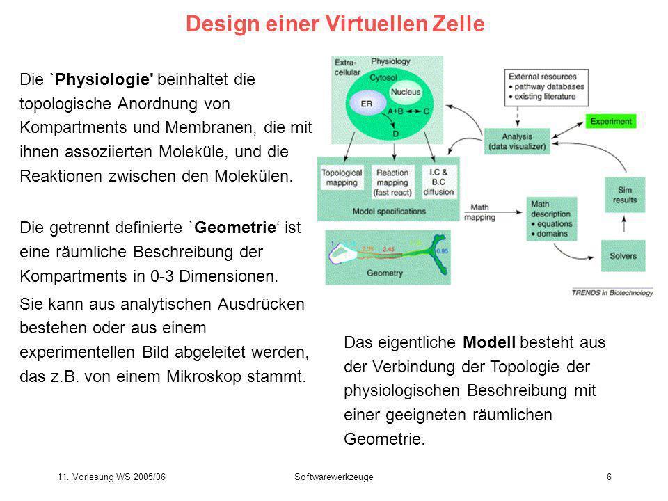11. Vorlesung WS 2005/06Softwarewerkzeuge6 Design einer Virtuellen Zelle Die `Physiologie' beinhaltet die topologische Anordnung von Kompartments und