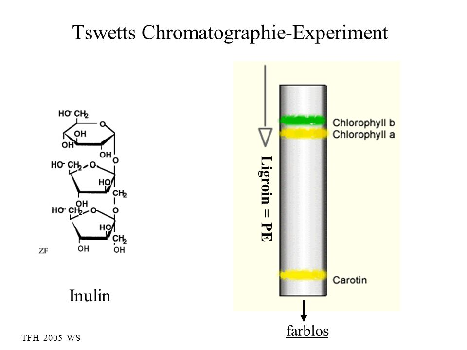 Tswetts Chromatographie-Experiment Inulin farblos Ligroin = PE