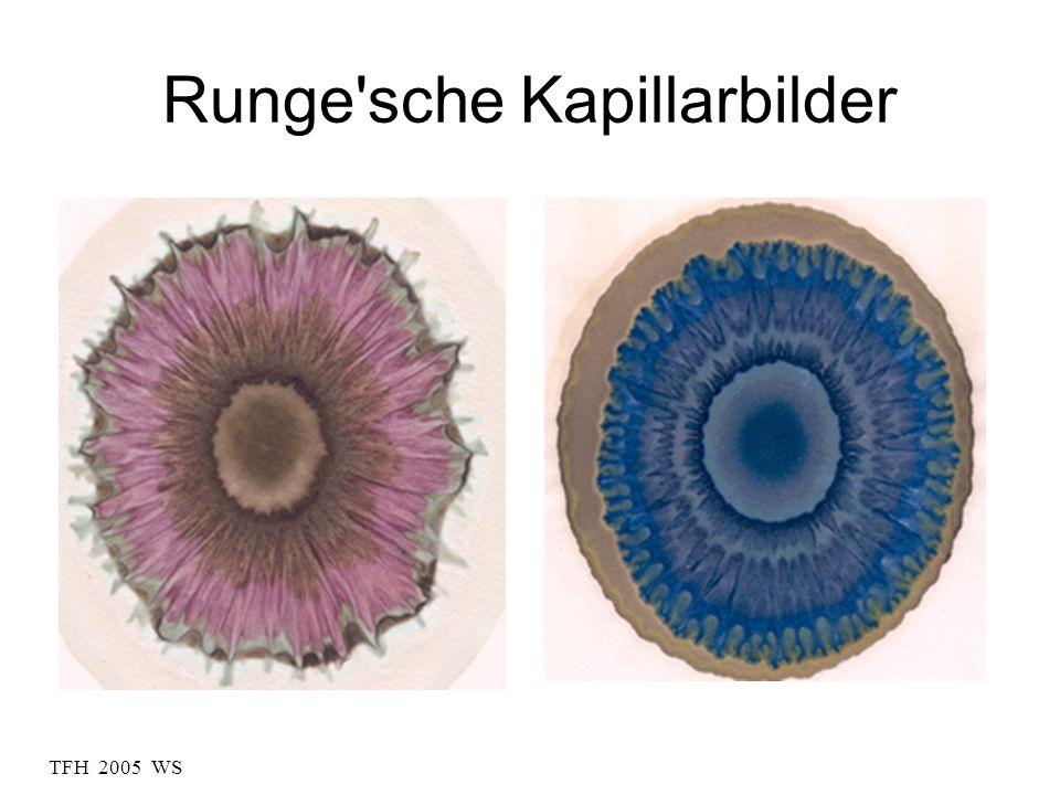 TFH 2005 WS Runge'sche Kapillarbilder