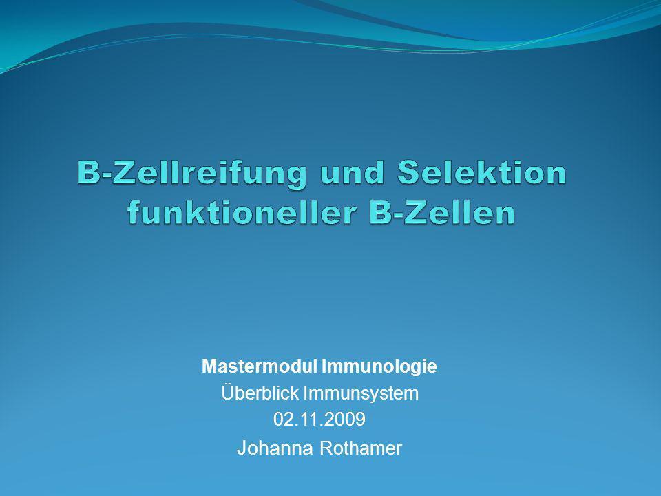 Periphere B-Zellreifung z.B.