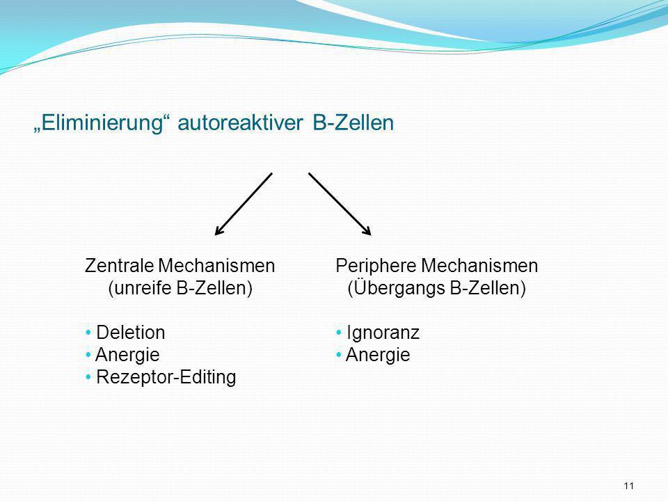 Eliminierung autoreaktiver B-Zellen Zentrale Mechanismen (unreife B-Zellen) Deletion Anergie Rezeptor-Editing Periphere Mechanismen (Übergangs B-Zelle