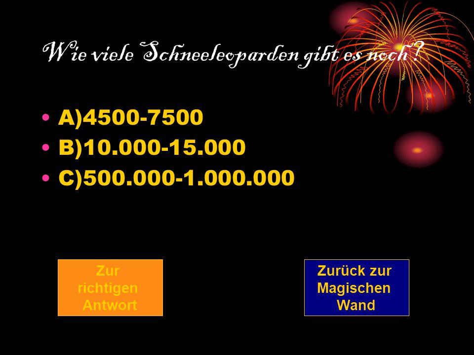 Wie viele Schneeleoparden gibt es noch? A)4500-7500 B)10.000-15.000 C)500.000-1.000.000 Zur richtigen Antwort Zurück zur Magischen Wand