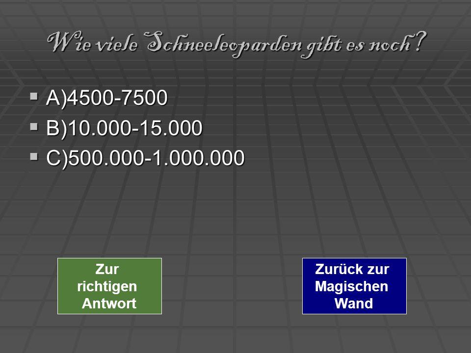 Wie viele Schneeleoparden gibt es noch? A)4500-7500 A)4500-7500 B)10.000-15.000 B)10.000-15.000 C)500.000-1.000.000 C)500.000-1.000.000 Zurück zur Mag
