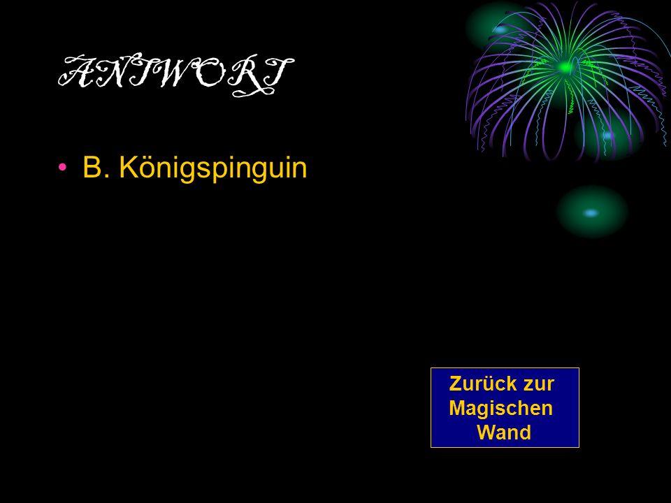 ANTWORT B. Königspinguin Zurück zur Magischen Wand