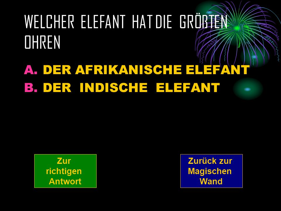WELCHER ELEFANT HAT DIE GRÖßTEN OHREN A.DER AFRIKANISCHE ELEFANT B.DER INDISCHE ELEFANT Zurück zur Magischen Wand Zur richtigen Antwort