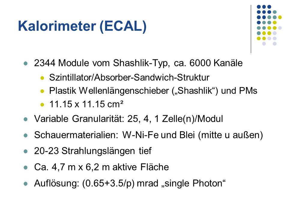 Kalorimeter (ECAL) 2344 Module vom Shashlik-Typ, ca. 6000 Kanäle Szintillator/Absorber-Sandwich-Struktur Plastik Wellenlängenschieber (Shashlik) und P