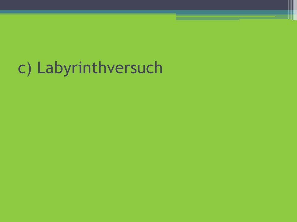 c) Labyrinthversuch