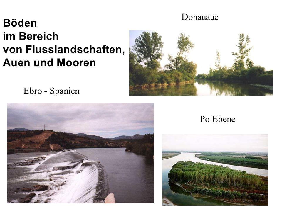 Ebro - Spanien Donauaue Po Ebene Böden im Bereich von Flusslandschaften, Auen und Mooren