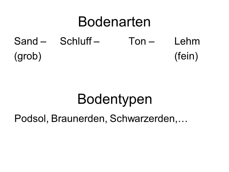 Bodenarten Sand – Schluff –Ton –Lehm (grob)(fein) Bodentypen Podsol, Braunerden, Schwarzerden,…