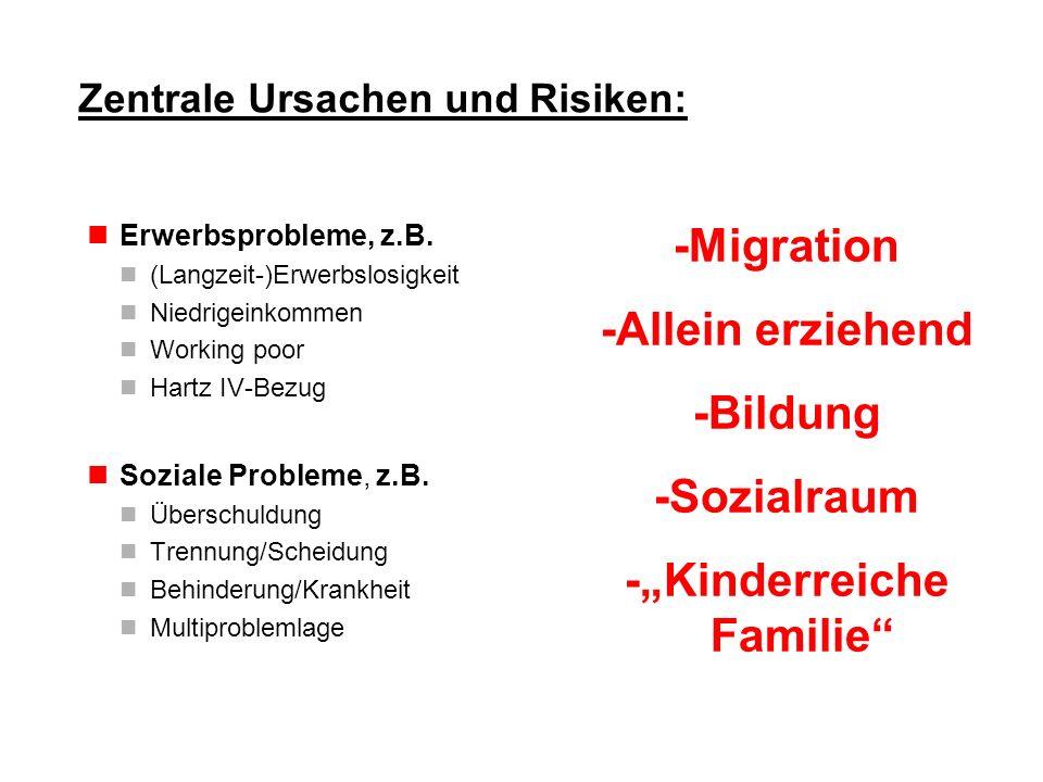 Zentrale Ursachen und Risiken: Erwerbsprobleme, z.B. (Langzeit-)Erwerbslosigkeit Niedrigeinkommen Working poor Hartz IV-Bezug Soziale Probleme, z.B. Ü