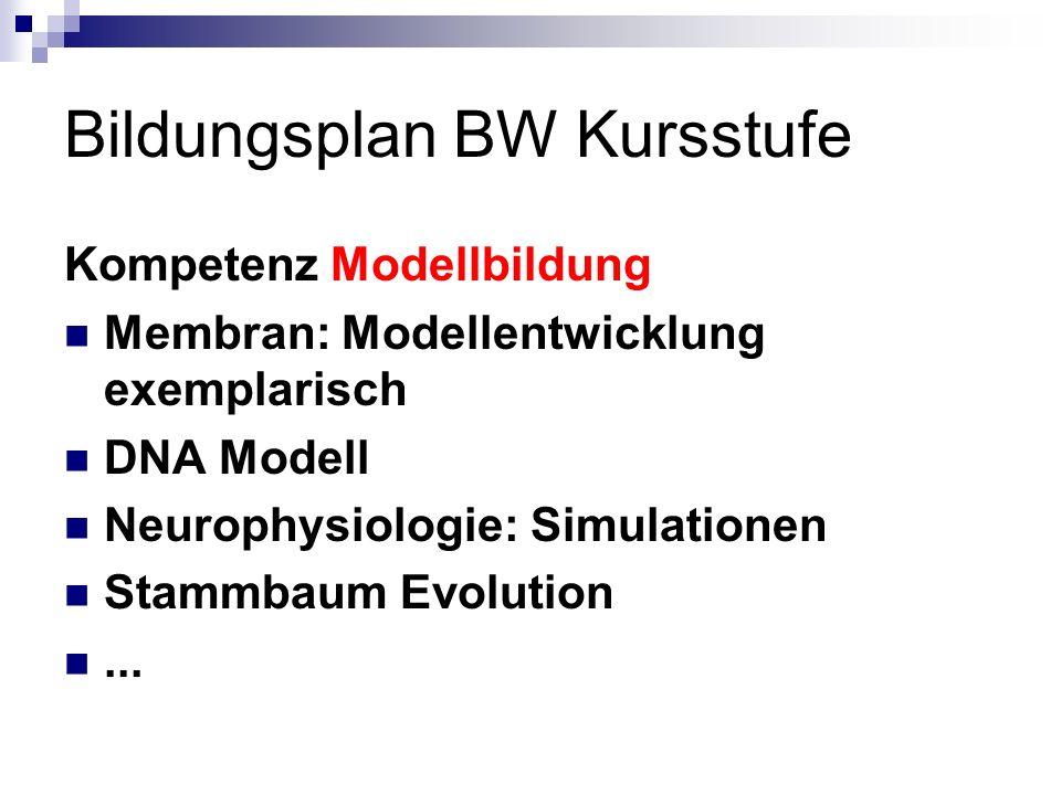 Bildungsplan BW Kursstufe Kompetenz Modellbildung Membran: Modellentwicklung exemplarisch DNA Modell Neurophysiologie: Simulationen Stammbaum Evolutio