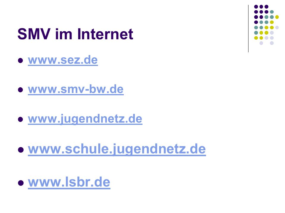 SMV im Internet www.sez.de www.smv-bw.de www.jugendnetz.de www.schule.jugendnetz.de www.lsbr.de