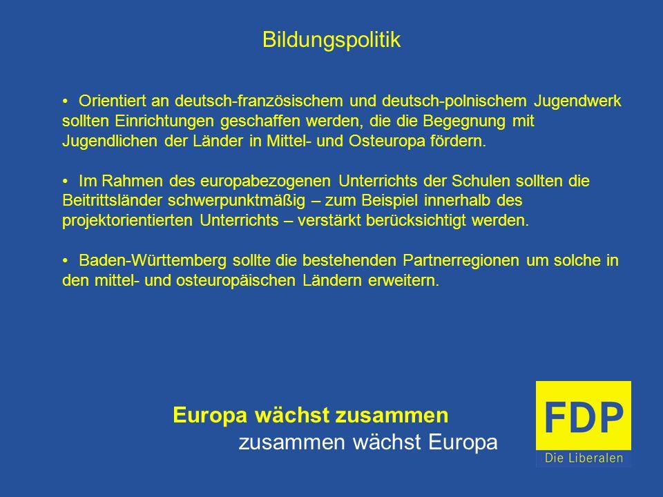 Bildungspolitik Orientiert an deutsch-französischem und deutsch-polnischem Jugendwerk sollten Einrichtungen geschaffen werden, die die Begegnung mit J