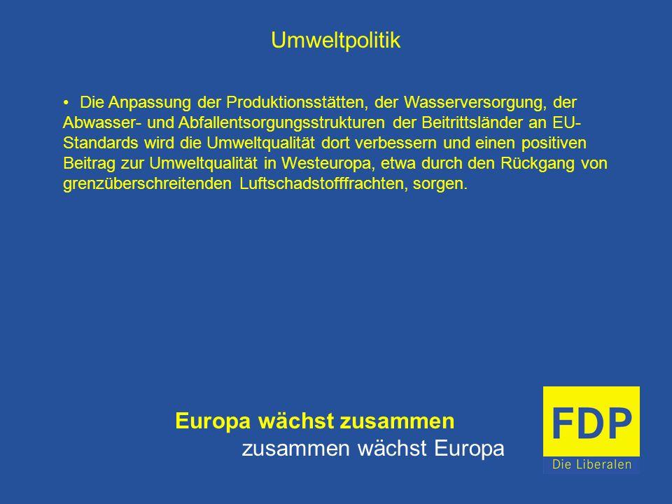 Umweltpolitik Die Anpassung der Produktionsstätten, der Wasserversorgung, der Abwasser- und Abfallentsorgungsstrukturen der Beitrittsländer an EU- Sta