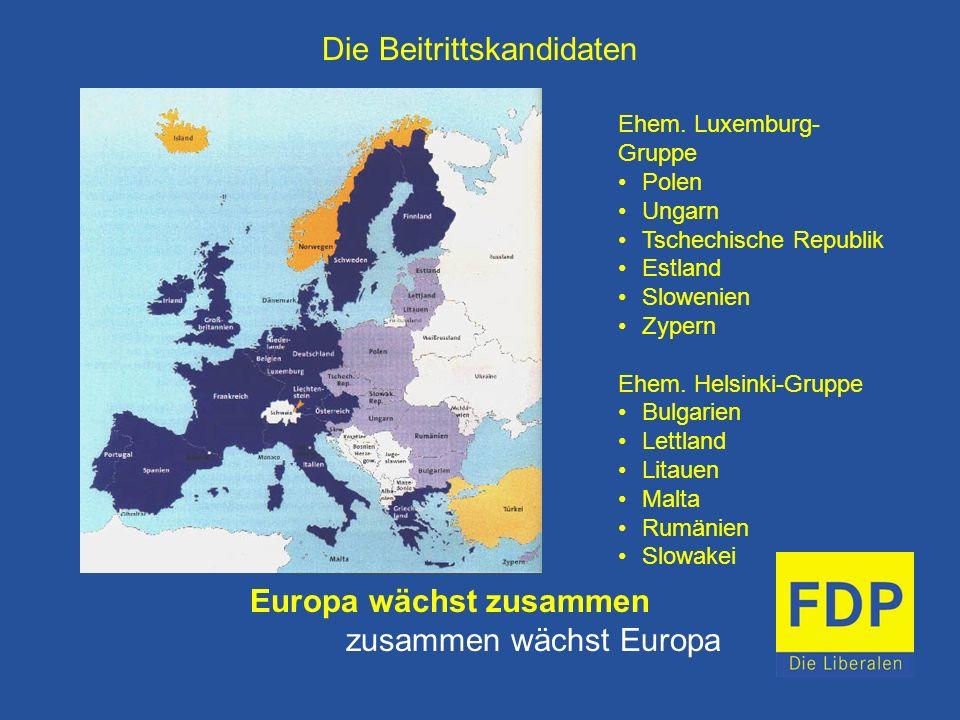 Die Beitrittskandidaten Europa wächst zusammen zusammen wächst Europa Ehem. Luxemburg- Gruppe Polen Ungarn Tschechische Republik Estland Slowenien Zyp