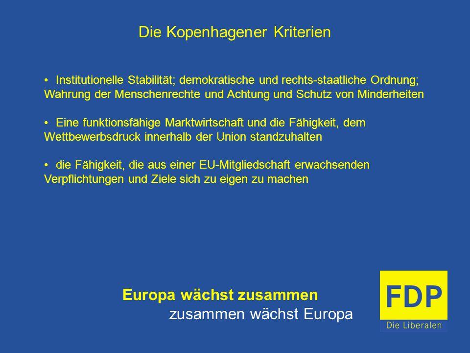 Die Kopenhagener Kriterien Institutionelle Stabilität; demokratische und rechts-staatliche Ordnung; Wahrung der Menschenrechte und Achtung und Schutz