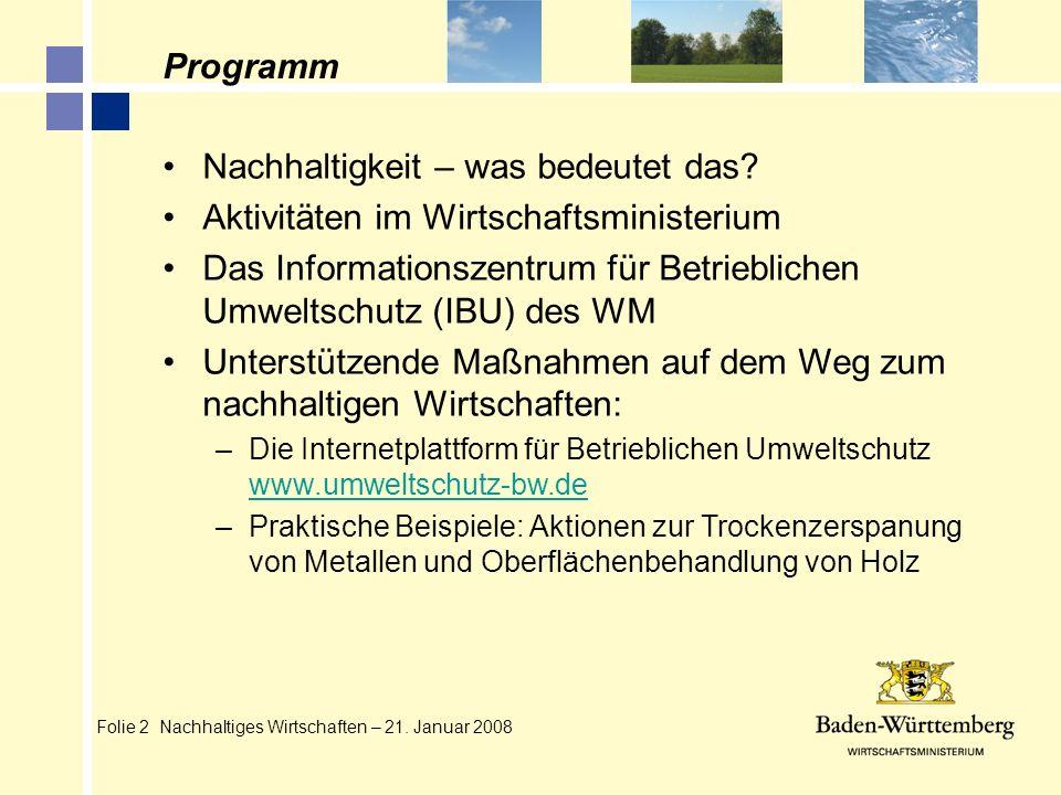 Folie 2 Nachhaltiges Wirtschaften – 21. Januar 2008 Programm Nachhaltigkeit – was bedeutet das? Aktivitäten im Wirtschaftsministerium Das Informations