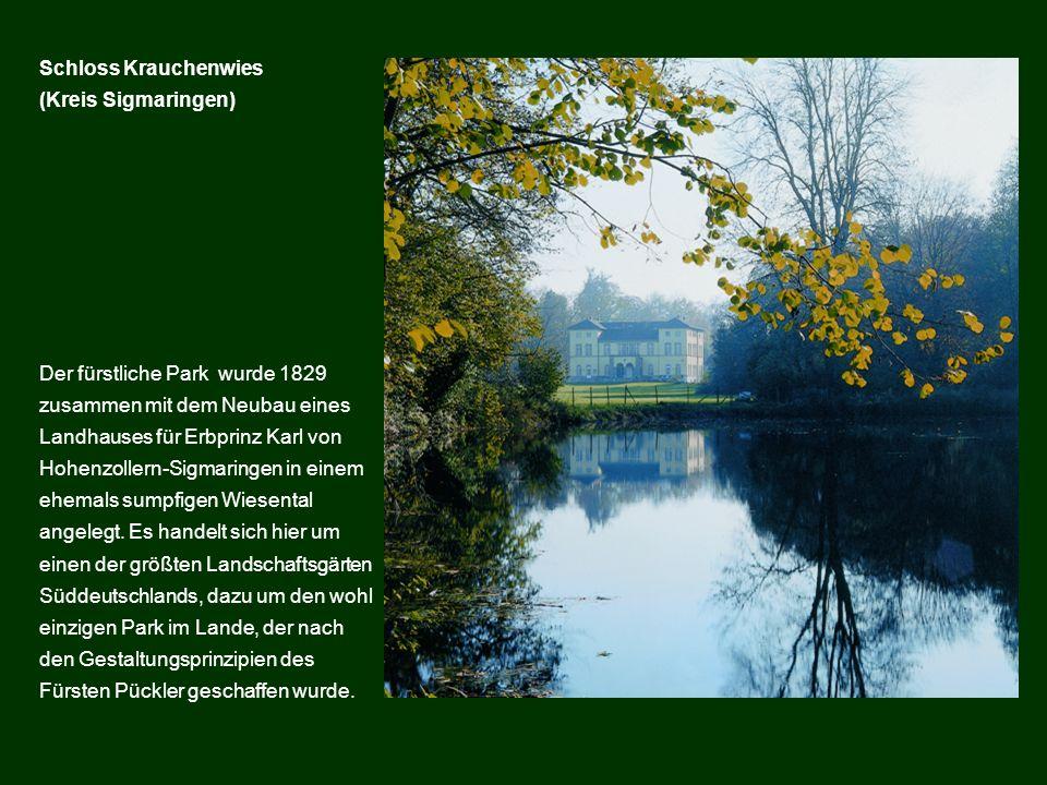 Der fürstliche Park wurde 1829 zusammen mit dem Neubau eines Landhauses für Erbprinz Karl von Hohenzollern-Sigmaringen in einem ehemals sumpfigen Wies