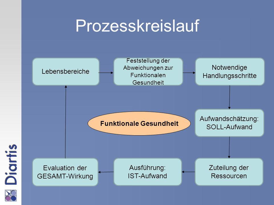 Prozesskreislauf Lebensbereiche Zuteilung der Ressourcen Feststellung der Abweichungen zur Funktionalen Gesundheit Aufwandschätzung: SOLL-Aufwand Notw