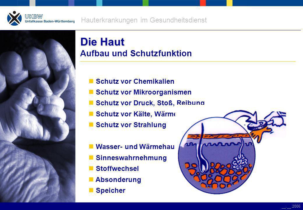 Hauterkrankungen im Gesundheitsdienst __.__.2006 Die Haut Die Haut Hauterkrankungen Allergische Reaktion – Spättyp-Allergie – Soforttyp-Allergie Abnutzungsekzem