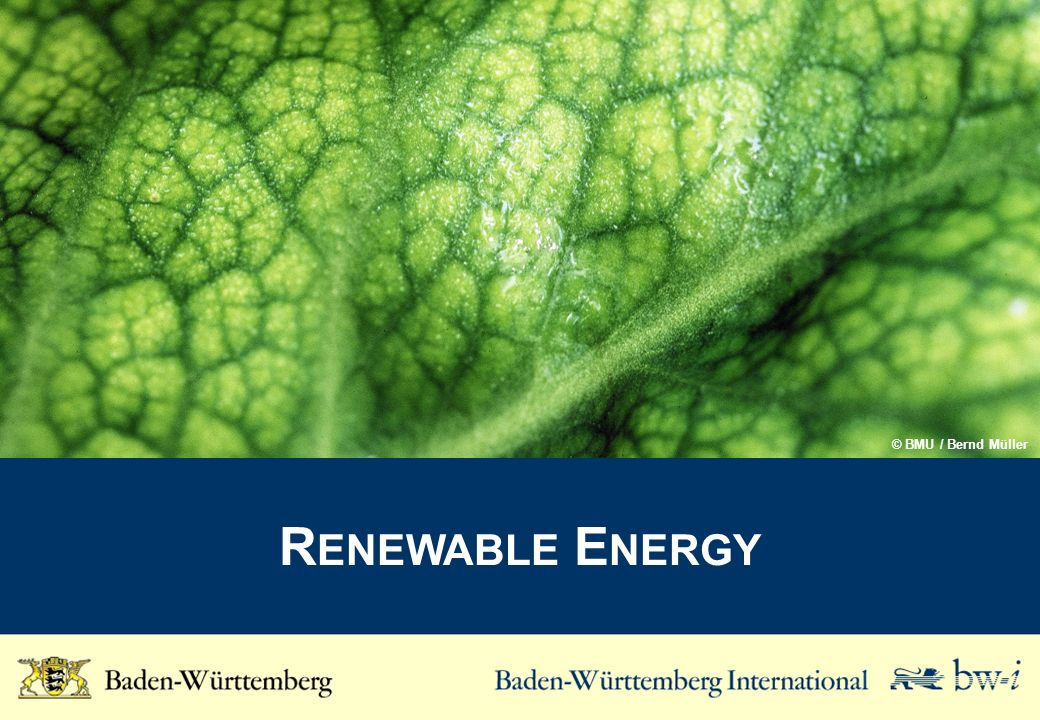 Research and Development Activities of the Biomass Industry in Baden-Württemberg Institutes listed with only a dedicated focus on Biomass industry specific themes Helmholtz-Gemeinschaft e.V.