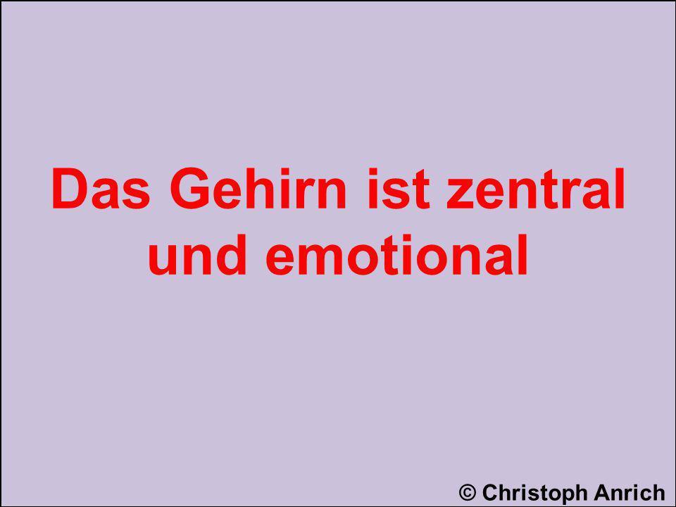 Das Gehirn ist zentral und emotional © Christoph Anrich