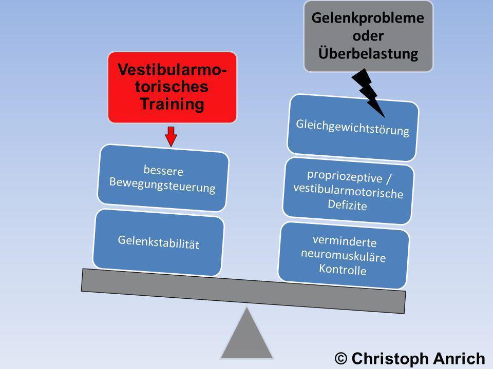 Vestibularmo- torisches Training Gelenkprobleme oder Überbelastung verminderte neuromuskuläre Kontrolle propriozeptive / vestibularmotorische Defizite