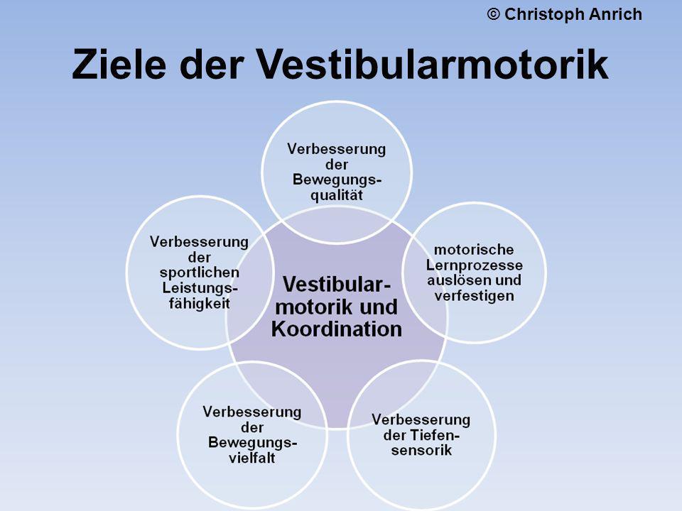 Ziele der Vestibularmotorik © Christoph Anrich
