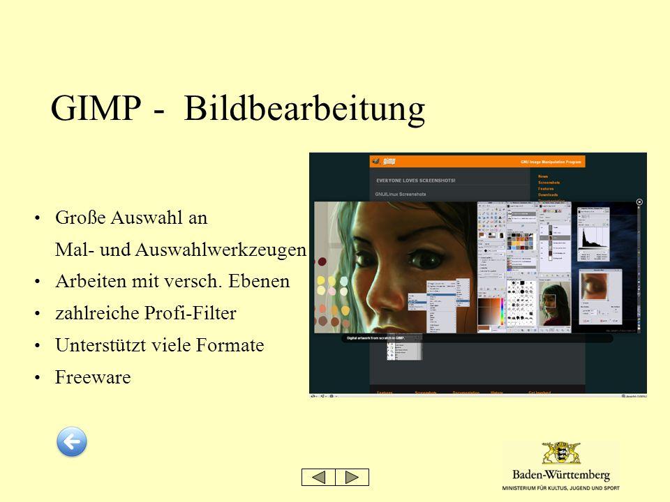 GIMP - Bildbearbeitung Große Auswahl an Mal- und Auswahlwerkzeugen Arbeiten mit versch. Ebenen zahlreiche Profi-Filter Unterstützt viele Formate Freew