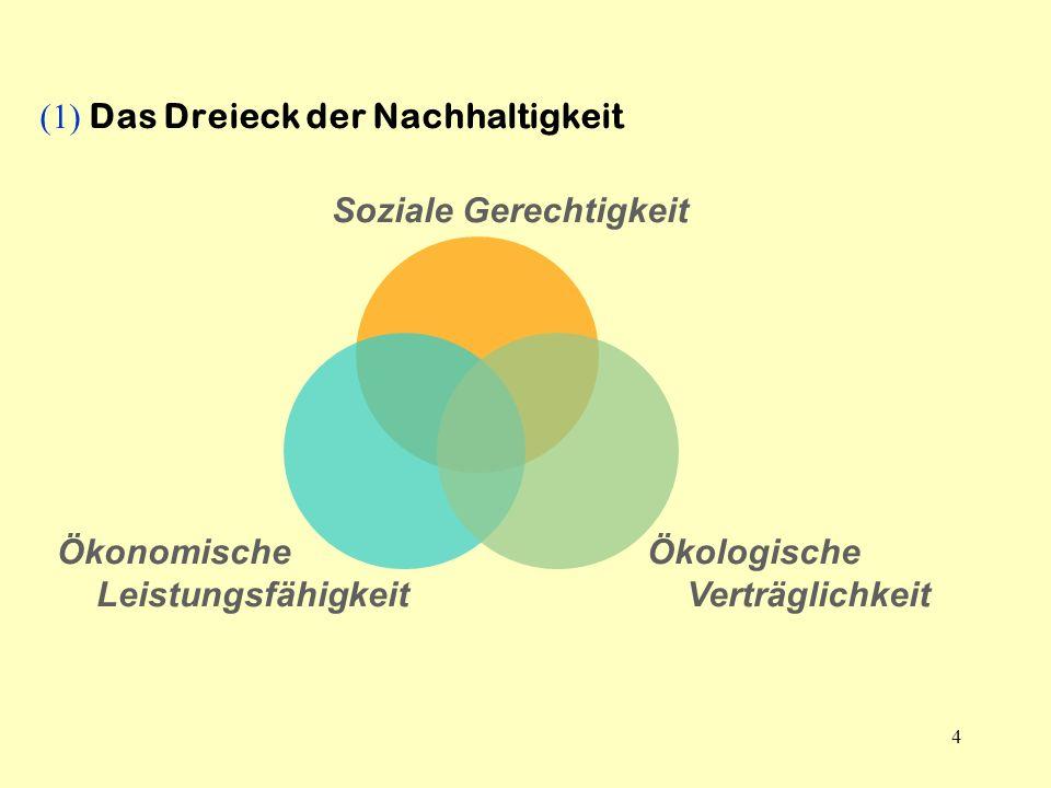 4 Soziale Gerechtigkeit (1) Das Dreieck der Nachhaltigkeit Ökonomische Leistungsfähigkeit Ökologische Verträglichkeit