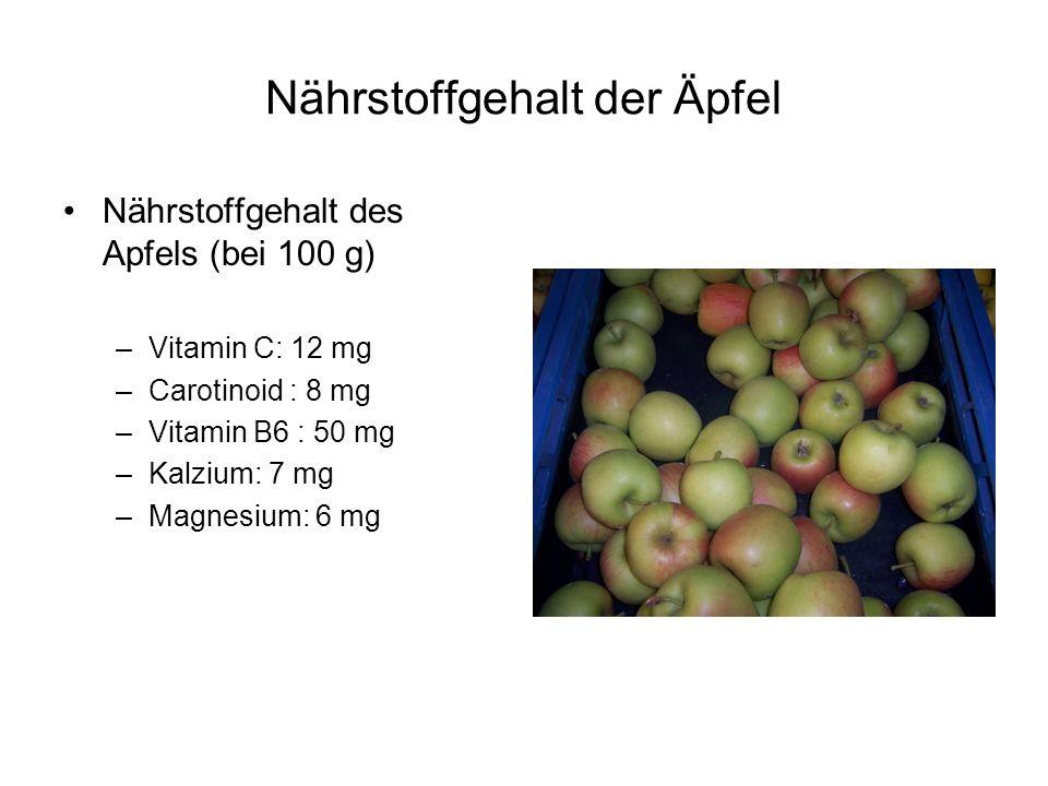 Nährstoffgehalt der Äpfel Nährstoffgehalt des Apfels (bei 100 g) –Vitamin C: 12 mg –Carotinoid : 8 mg –Vitamin B6 : 50 mg –Kalzium: 7 mg –Magnesium: 6 mg