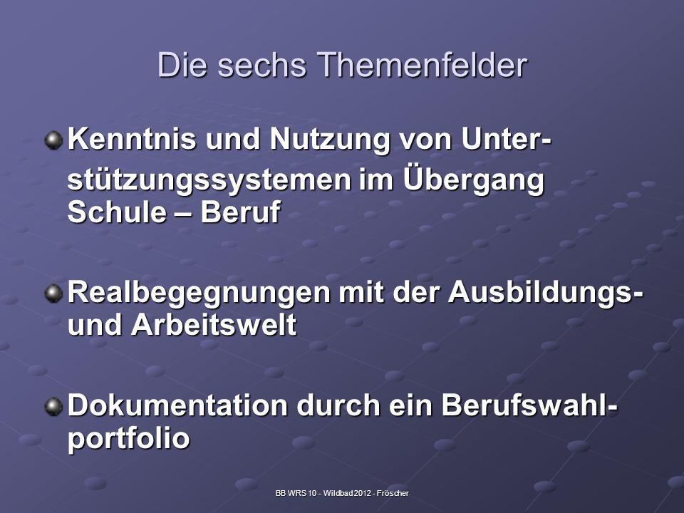 BB WRS 10 - Wildbad 2012 - Fröscher Die sechs Themenfelder Kenntnis und Nutzung von Unter- stützungssystemen im Übergang Schule – Beruf Realbegegnunge