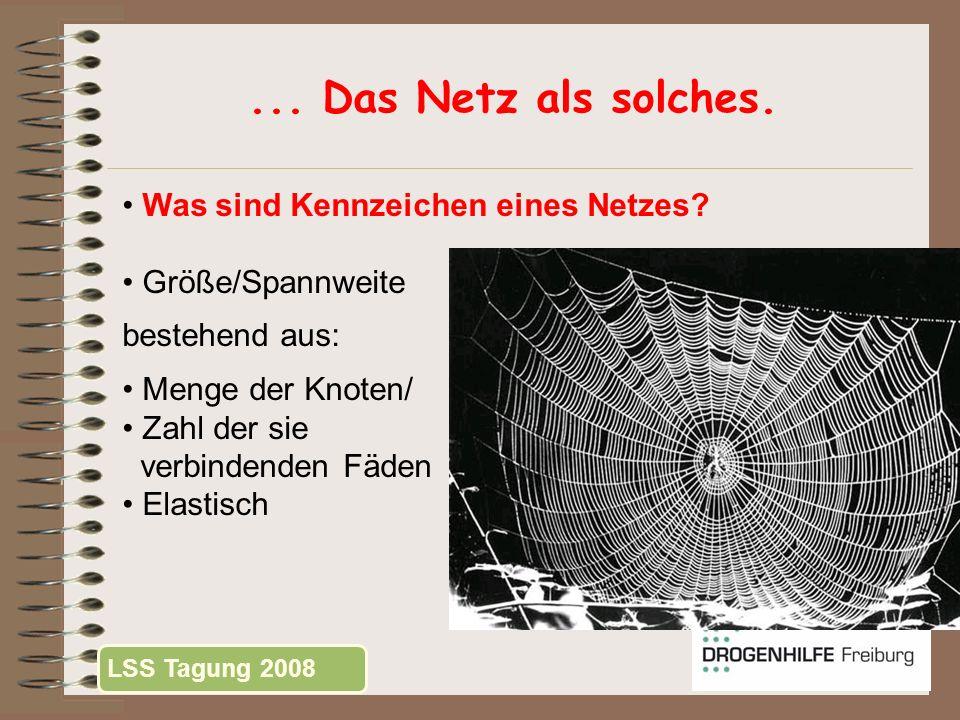 ... Das Netz als solches. Was sind Kennzeichen eines Netzes? Größe/Spannweite bestehend aus: Menge der Knoten/ Zahl der sie verbindenden Fäden Elastis