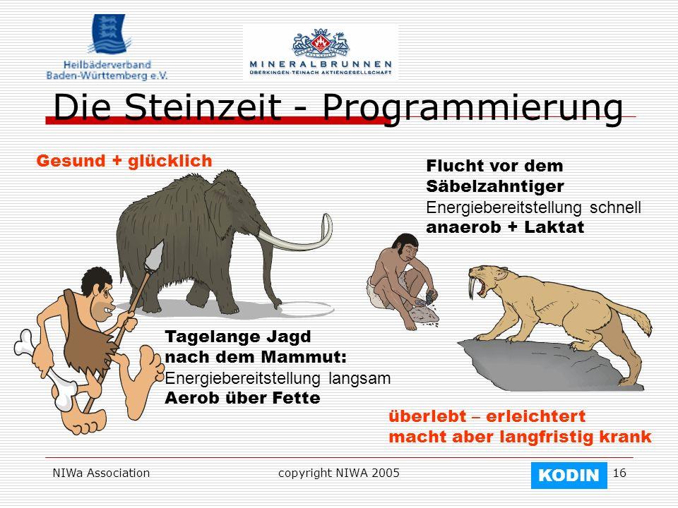 NIWa Associationcopyright NIWA 200516 Die Steinzeit - Programmierung Tagelange Jagd nach dem Mammut: Energiebereitstellung langsam Aerob über Fette Fl