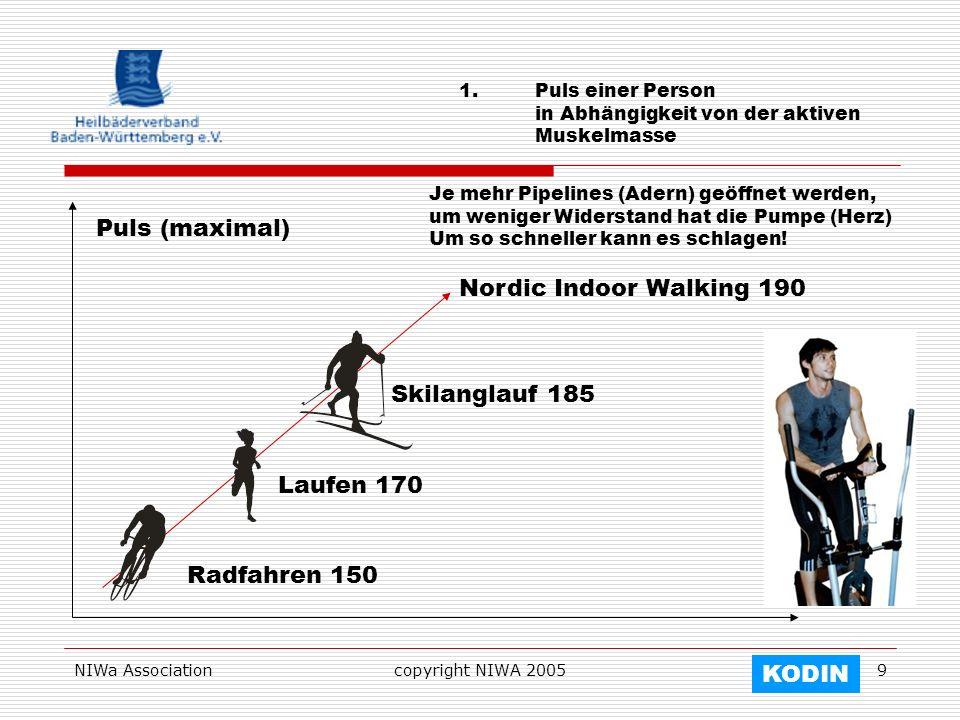 NIWa Associationcopyright NIWA 20059 1.Puls einer Person in Abhängigkeit von der aktiven Muskelmasse Puls (maximal) Radfahren 150 Laufen 170 Skilangla