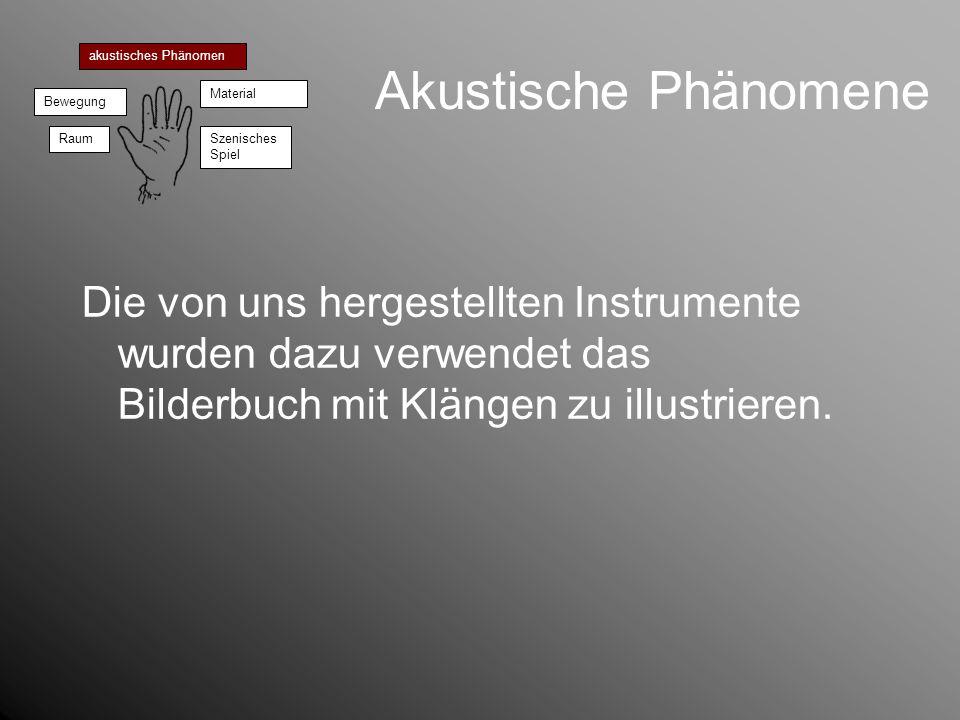 Akustische Phänomene Die von uns hergestellten Instrumente wurden dazu verwendet das Bilderbuch mit Klängen zu illustrieren. akustisches Phänomen Bewe