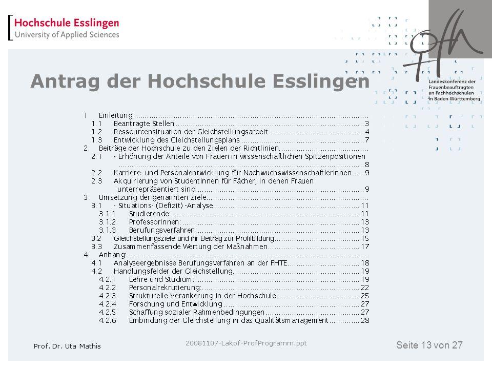 Seite 13 von 27 Prof. Dr. Uta Mathis 20081107-Lakof-ProfProgramm.ppt Antrag der Hochschule Esslingen