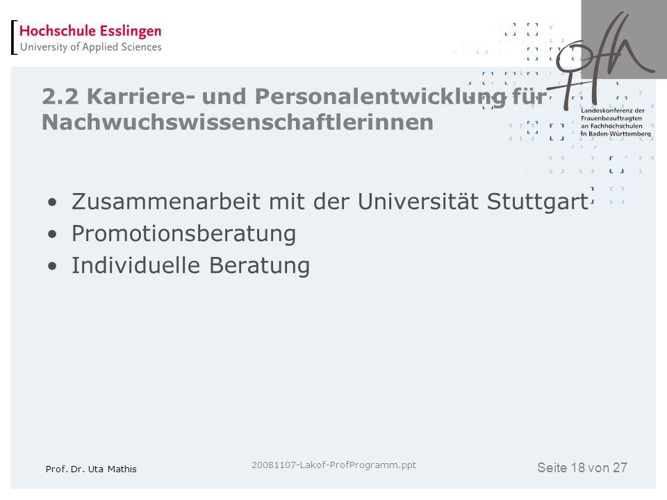 Seite 18 von 27 Prof. Dr. Uta Mathis 20081107-Lakof-ProfProgramm.ppt 2.2 Karriere- und Personalentwicklung für Nachwuchswissenschaftlerinnen Zusammena