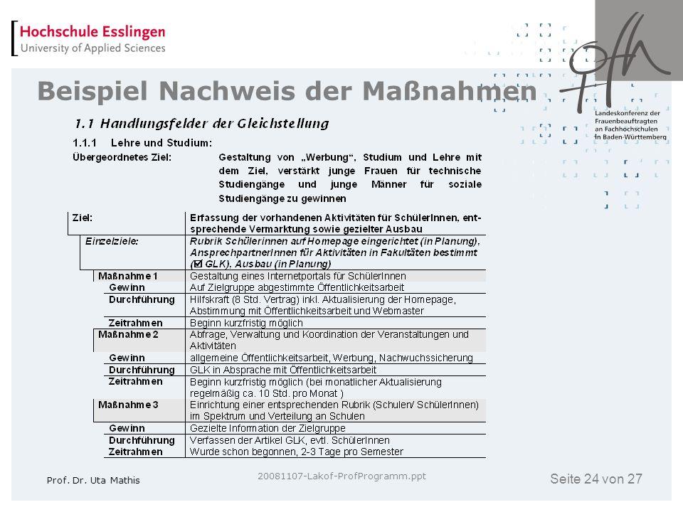 Seite 24 von 27 Prof. Dr. Uta Mathis 20081107-Lakof-ProfProgramm.ppt Beispiel Nachweis der Maßnahmen