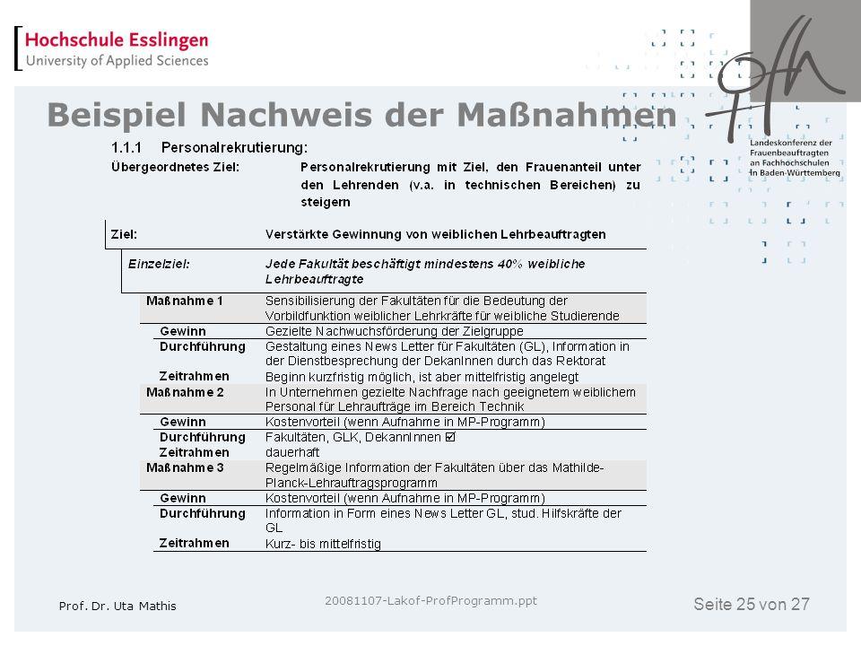 Seite 25 von 27 Prof. Dr. Uta Mathis 20081107-Lakof-ProfProgramm.ppt Beispiel Nachweis der Maßnahmen